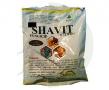 Shavit  72 WDG