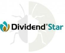 DIVIDEND STAR 036 FS